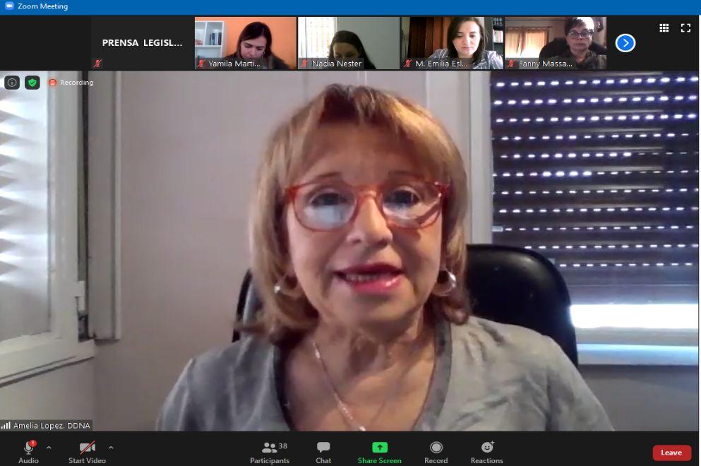 En comisión, Amelia López, defensora de los Derechos de Niñas, Niños y Adolescentes