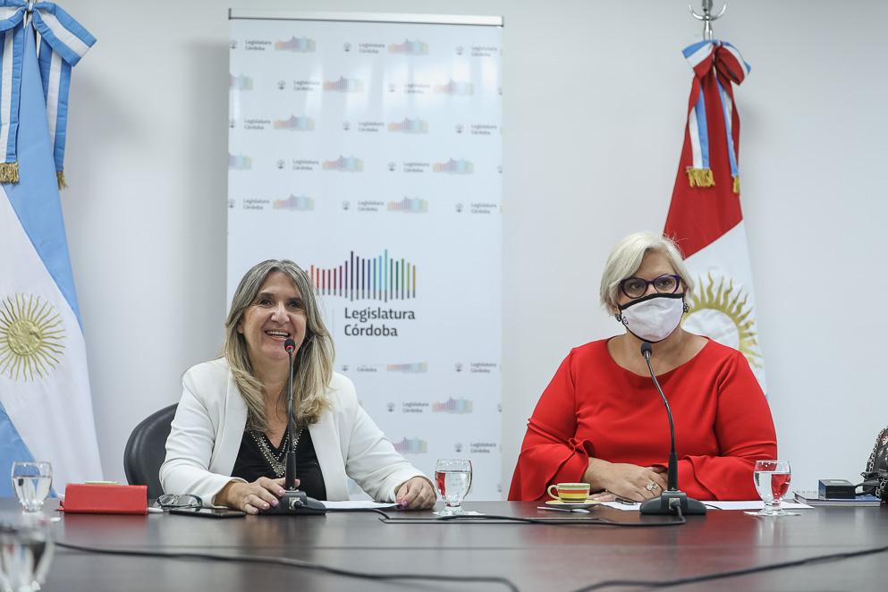 Comisión de Equidad y Lucha contra la Violencia de Género