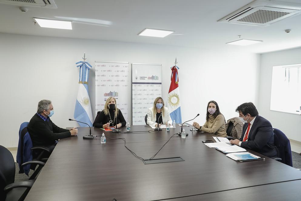 Funcionarios de la SeNAF expusieron ante Comisión de Niñez, Adolescencia y Familia