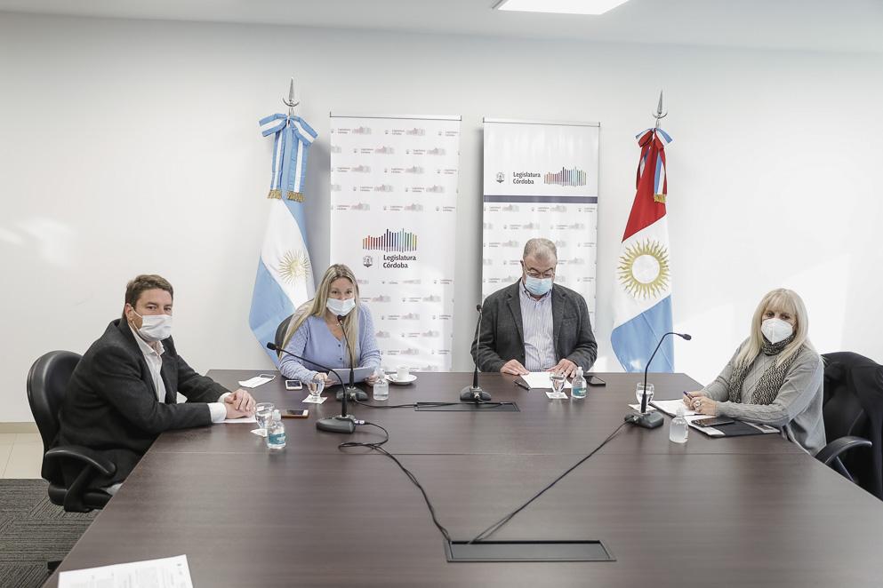 Reunión conjunta de las comisiones de Salud, Economía y Legislación General
